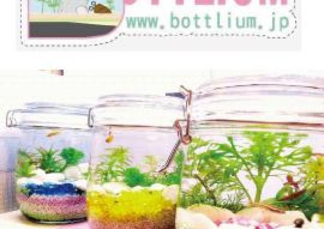 春休み企画 小さな水族館「ボトリウム」を作ろう!