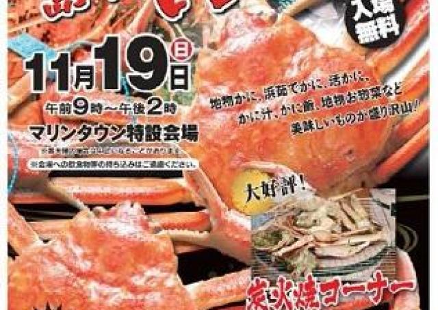 加能ガニ待望の解禁!浜茹でカニや活きガニを食べつくせ!