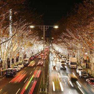 【夜の0円散歩】表参道イルミネーション、7年ぶりに全域ライトアップ!