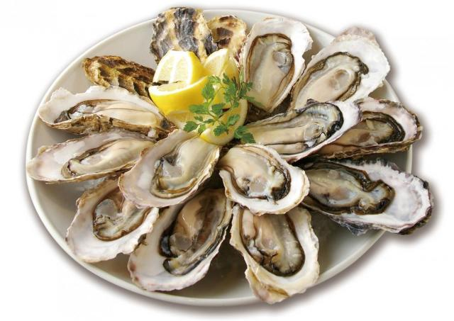 今年最後の半額セール! ゼネラル・オイスターで牡蠣祭りだ~!
