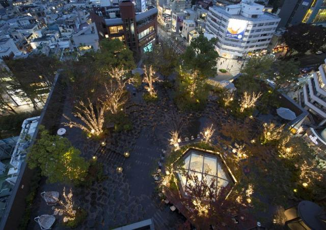夜の0円散歩はいかが? 1万6000球が彩る表参道の「森」