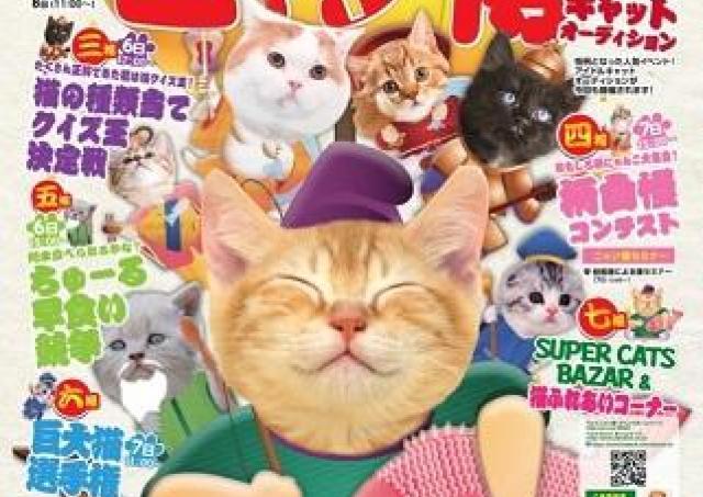かわいい仔猫ちゃんに会える! 北海道最大級のネコの祭典、今年も開催