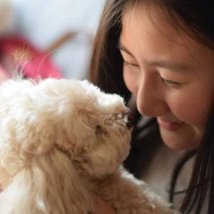 愛犬と一緒に旅しよう! オトクな愛犬無料特別プラン実施中