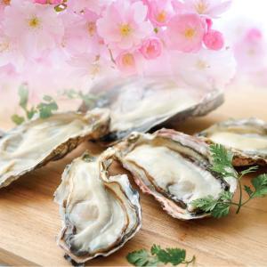 春牡蠣が安い! ゼネラル・オイスターの「半額祭」行かねば