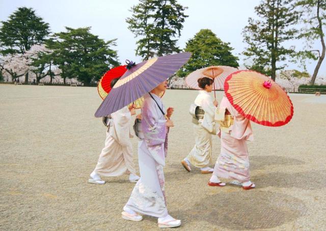 桜満開の金沢で優雅なひとときを...きもの園遊会開催