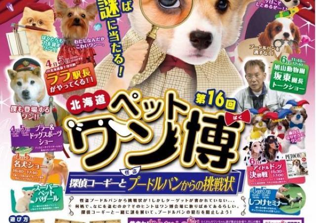 駅長犬「ララ」もやってくる! 大人気の「ペットワン博」開催