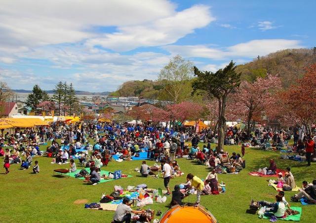 日本列島最後の花見!「あっけし桜・牡蠣まつり」開催