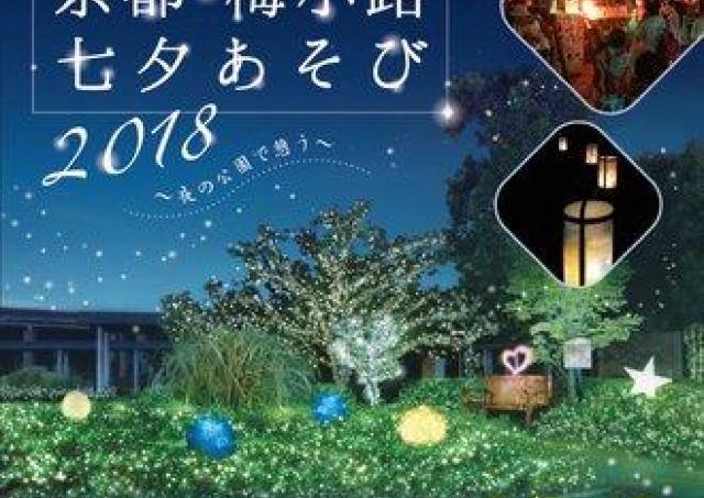 夜の梅小路公園でこの期間だけ体験できる「京都・梅小路七夕あそび」