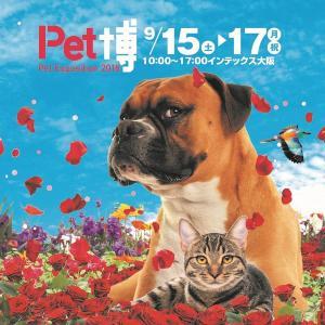 【プレゼント】「Pet博2018 in 大阪」ご招待券(10組20名様)