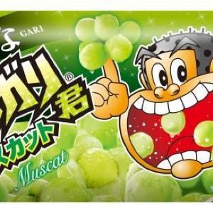 発売初日から話題沸騰! ガリガリ君マスカットは名作「梨」に匹敵する美味しさ!?