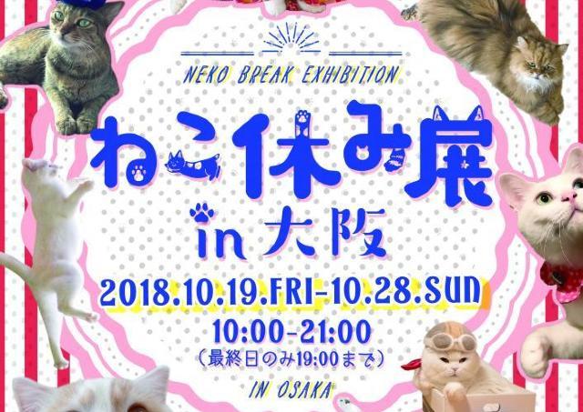 新作も揃えて約1年半ぶりの大阪開催! 「ねこ休み展in 大阪」