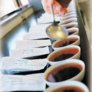 無料で楽しむティーブレンド体験。「日東紅茶Tea Stand」が期間限定オープン