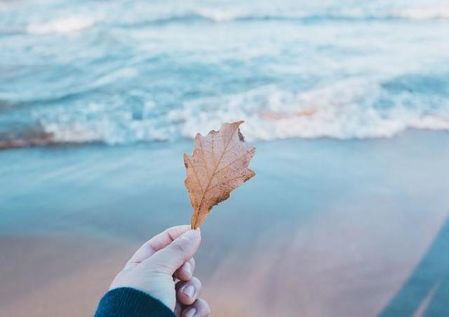 新しいことを始めたい秋に。大人の女性に捧ぐ「1日講座」3選。