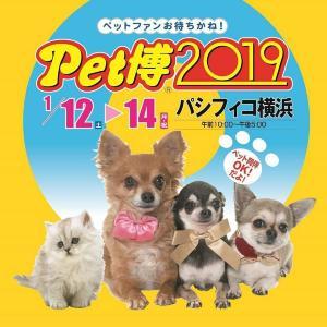 【プレゼント】動物好きお待ちかねの参加・体験型イベント「Pet博2019 in 横浜」ご招待券(10組20名様)