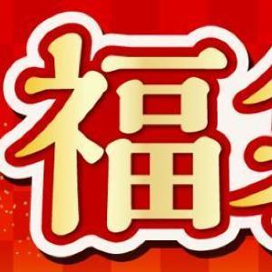 【絶対お得】しまむら「福袋」、オールコーデが2000円でそろってしまう。