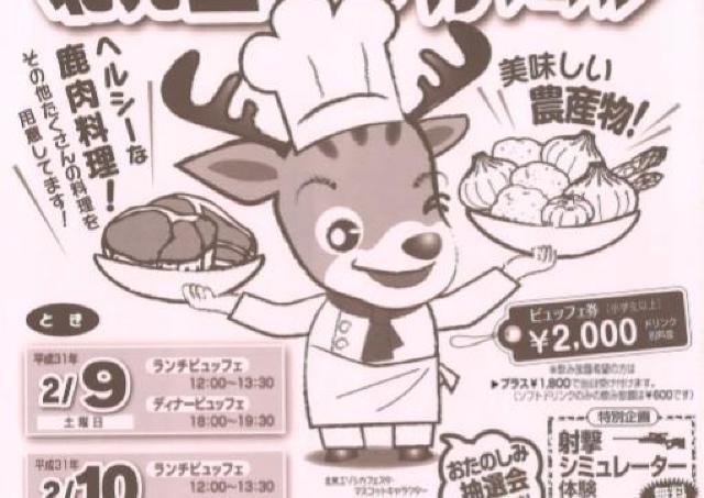 栄養満点のエゾシカ肉を堪能して!