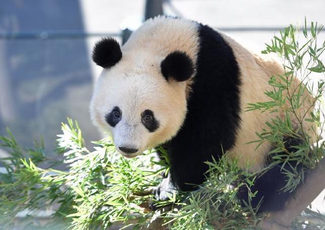 2月24日は動物園・水族園へ。 東京都19施設の入園料が無料になるよ~。