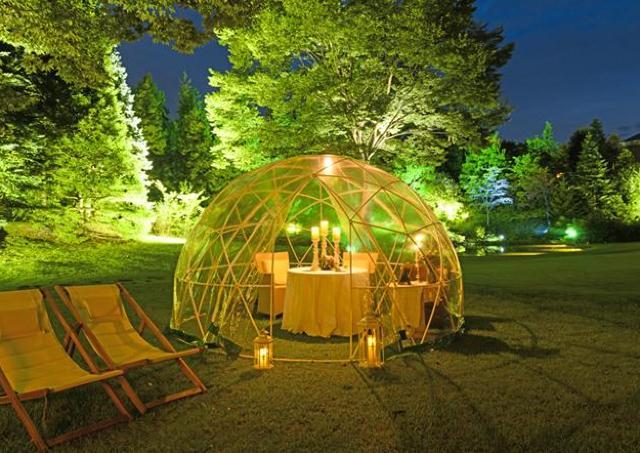 夜桜香るリゾートディナーで春を先取り