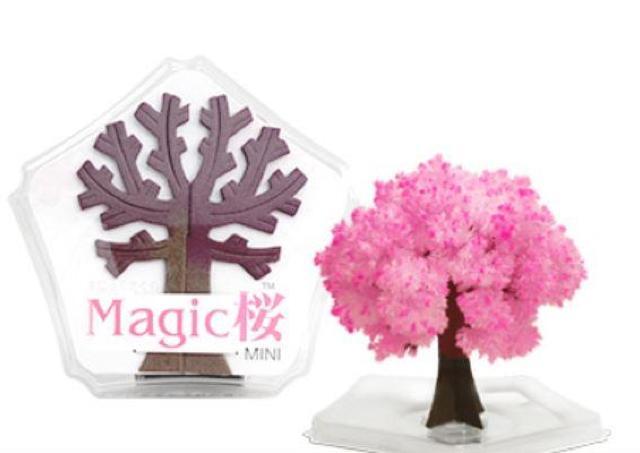 デスクでお花見できちゃう。 12時間で満開になる不思議な「桜」