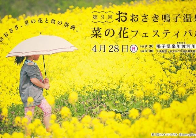 春色のじゅうたんに包まれる「菜の花フェス」