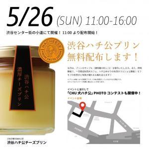 ハチ公チーズプリン3000個を無料配布! 渋谷に行かなきゃ。