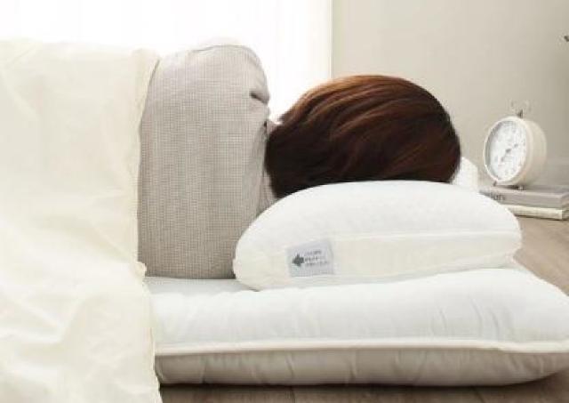 「1回も起きねえ」 睡眠の質を爆上げしてくれると噂のまくら、ニトリで発見。
