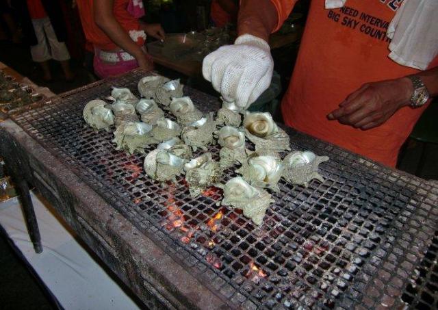 伊豆山の海でとれた新鮮なサザエはいかが?