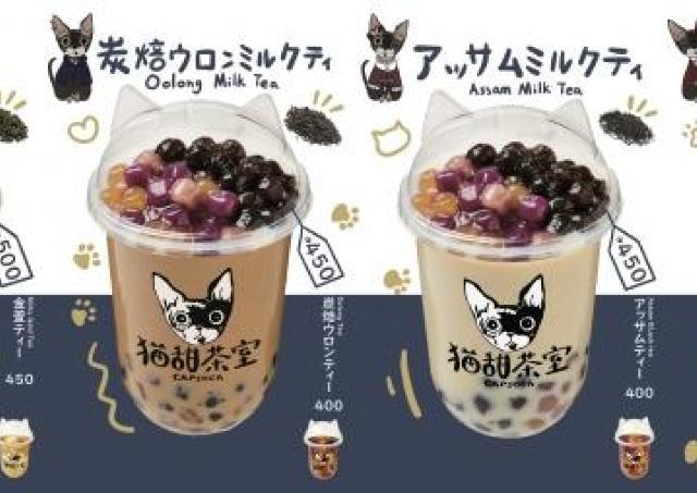 猫耳カップに、高級茶葉。かわいくて美味しいタピオカ専門店ができたよ。