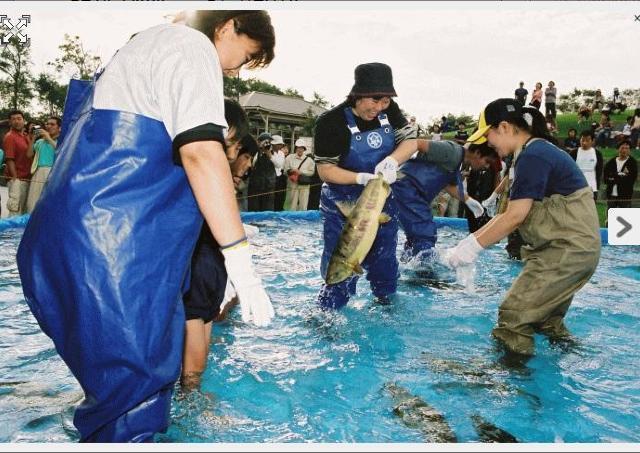 鮭の故郷・石狩で鮭づくしの2日間!