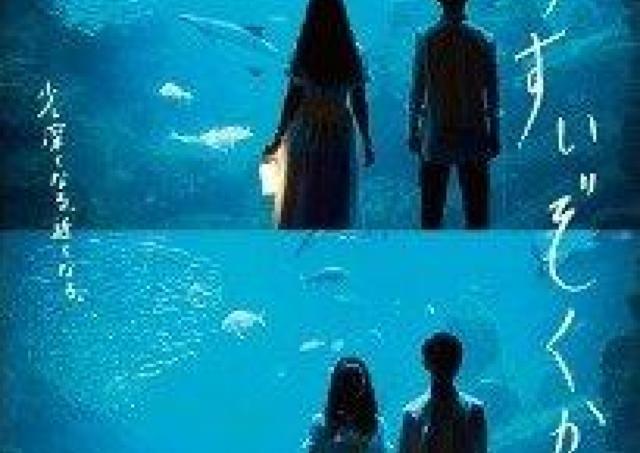 夜の水族館でまるで海に包まれているような体験を。