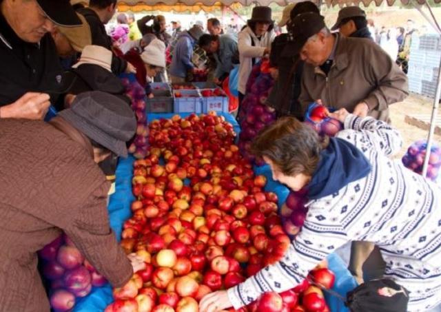 入場無料! つめ放題やくじが楽しめる北海道の「りんごまつり」