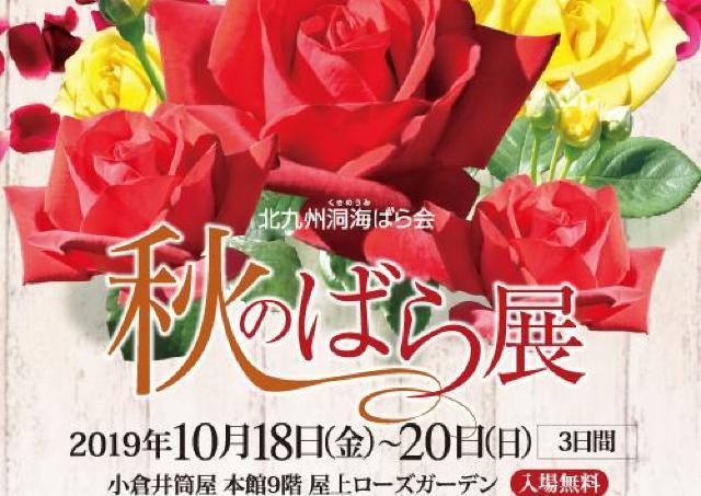 秋のバラの魅力満開!優雅な香りと多彩な色に心うっとり。