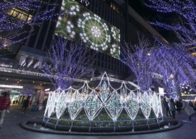 新たなシンボルツリー登場!イルミネーション輝く「光の街・博多」