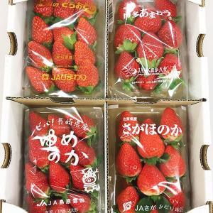 9県10種のイチゴを食べ比べ! お得なアソートケースも販売