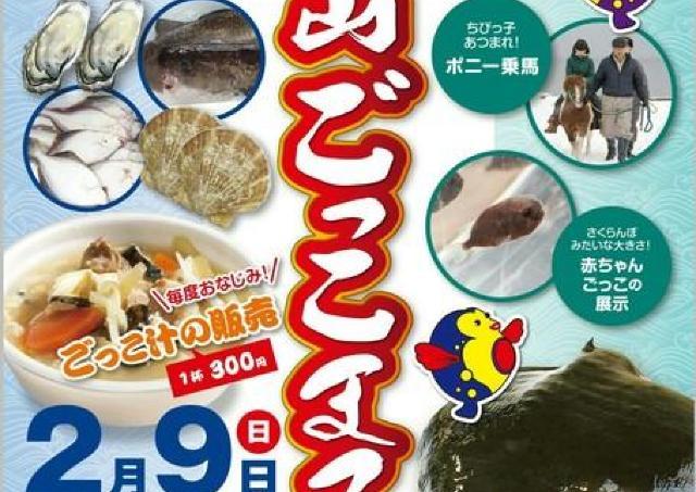 漁師から広まった「ごっこ」や新鮮な魚介を味わう