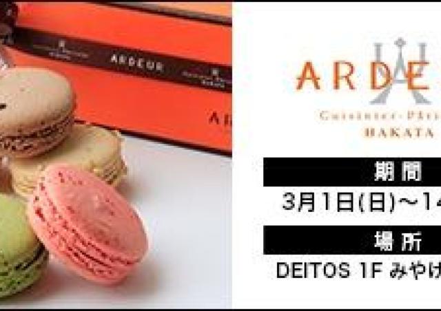 可愛いマカロンが人気「ARDEUR」JR博多シティに期間限定オープン