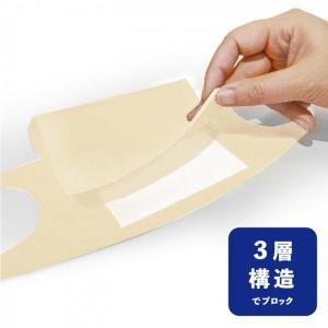 ウレタンメーカーが繰り返し使える日本製マスク販売 フィルターシート50枚付き