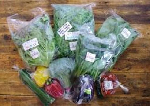 ローソンが「道の駅」のフードロス解消支援 神奈川のローソン店舗で新鮮野菜を販売