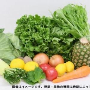 「モス」が農家さんを応援! モスバーガーに使われる野菜などのセット販売を支援
