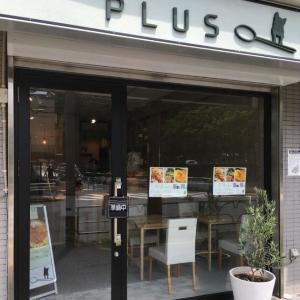 世田谷区に欧風カレー店がオープン 当面はテイクアウトのみ