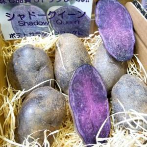 レアな北海道ジャガイモも破格! 過剰在庫で最大半額、対象はすべて送料無料。