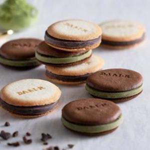 栽培から手掛ける本格派 チョコレート専門店「ダリケー」オープン