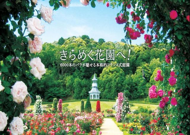 バラが見ごろに 河津バガテル公園が営業再開