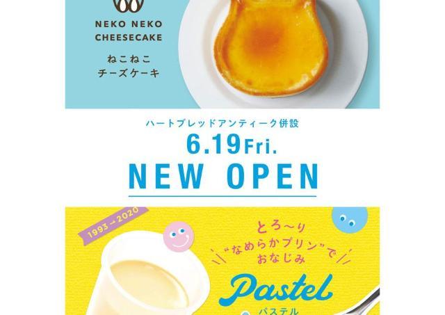可愛すぎる「ねこねこチーズケーキ/ Pastel」 ニューオープン