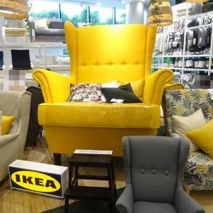 原宿駅前で北欧トリップ。IKEAで幸福度アップ【辛酸なめ子の東京アラカルト#40】