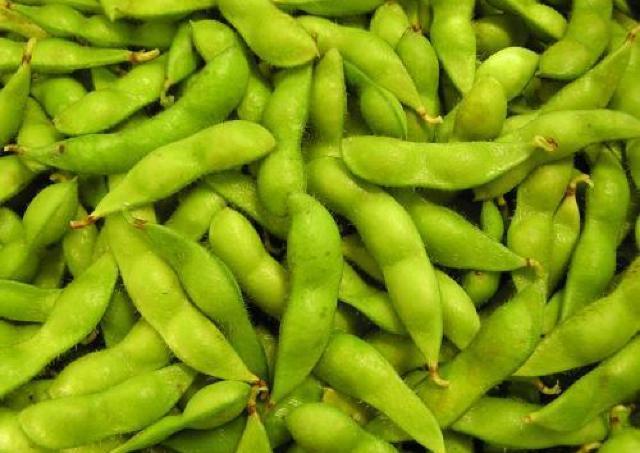 味よし色よし香りよしの「秘伝豆」を味わおう