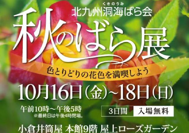 色とりどりのバラが華麗に競演!井筒屋小倉展で「秋のばら展」開催