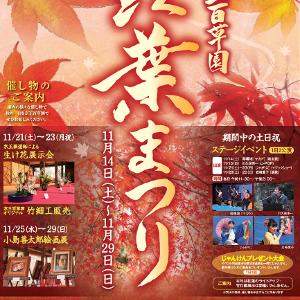 京王百草園に広がる紅葉で季節を感じる