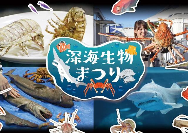 シーパラで深海生物を見て、さわって、知って、味わう。
