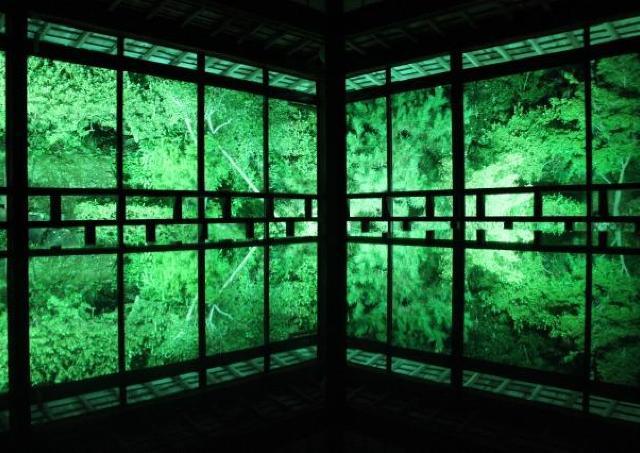 青林寺の幻想的なライトアップの世界